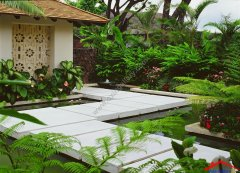 tropical-landscape-yard-with-garden-fence-i_g-ISd44m37ylhx201000000000-jqf44.jpg